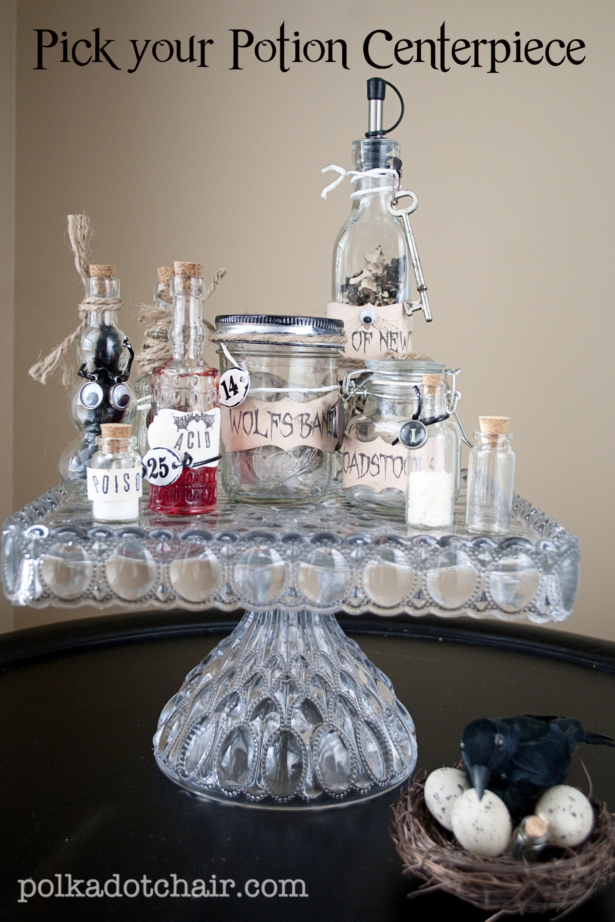 Pick your Potion Halloween Centerpiece The Polka Dot Chair