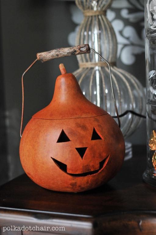 pumpkin-gourd