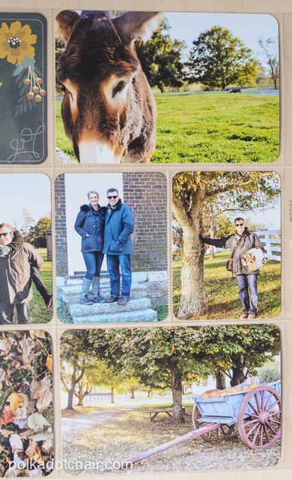 Project Life Scrapbook Album ideas on polkadotchair.com