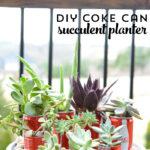 DIY Coke® Can Succulent Planter