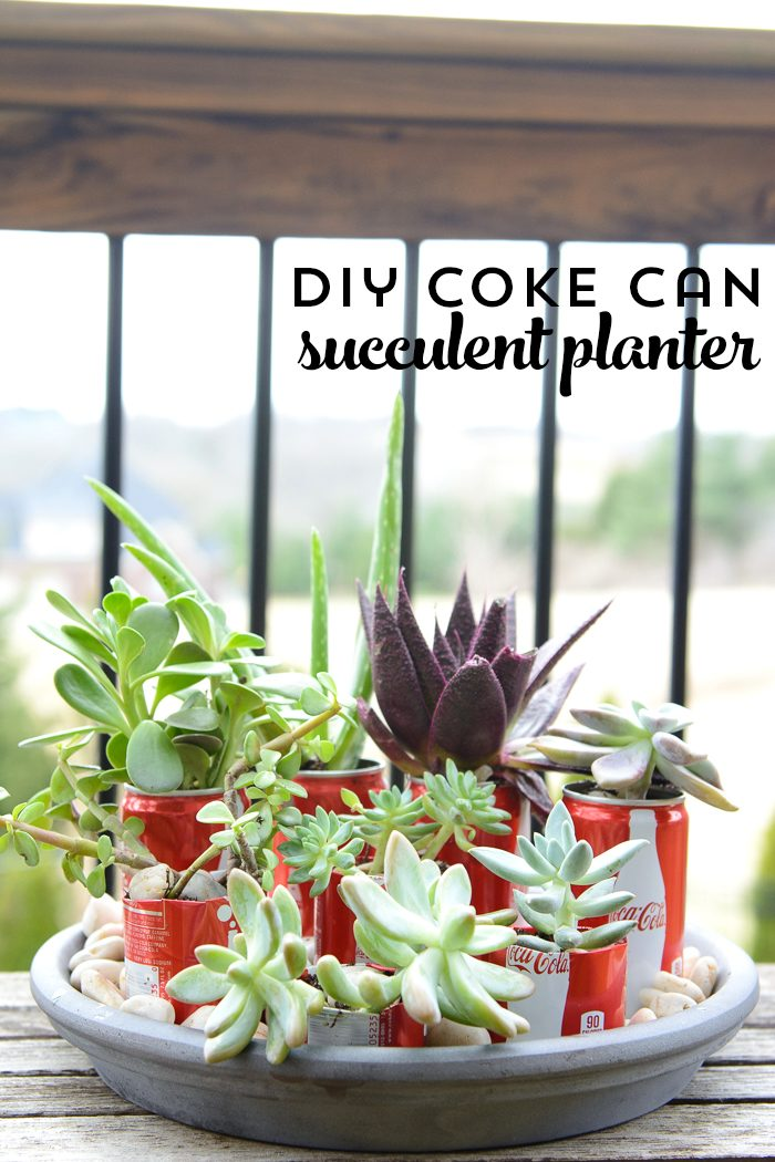 Diy Coke Can Succulent Planter Recycled Coke Can Craft Ideas
