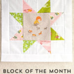November Block of the Month: A Sawtooth Star Quilt Block