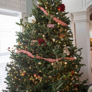 Tips for caring for a Christmas Tree and keeping fresh Christmas trees looking great all season
