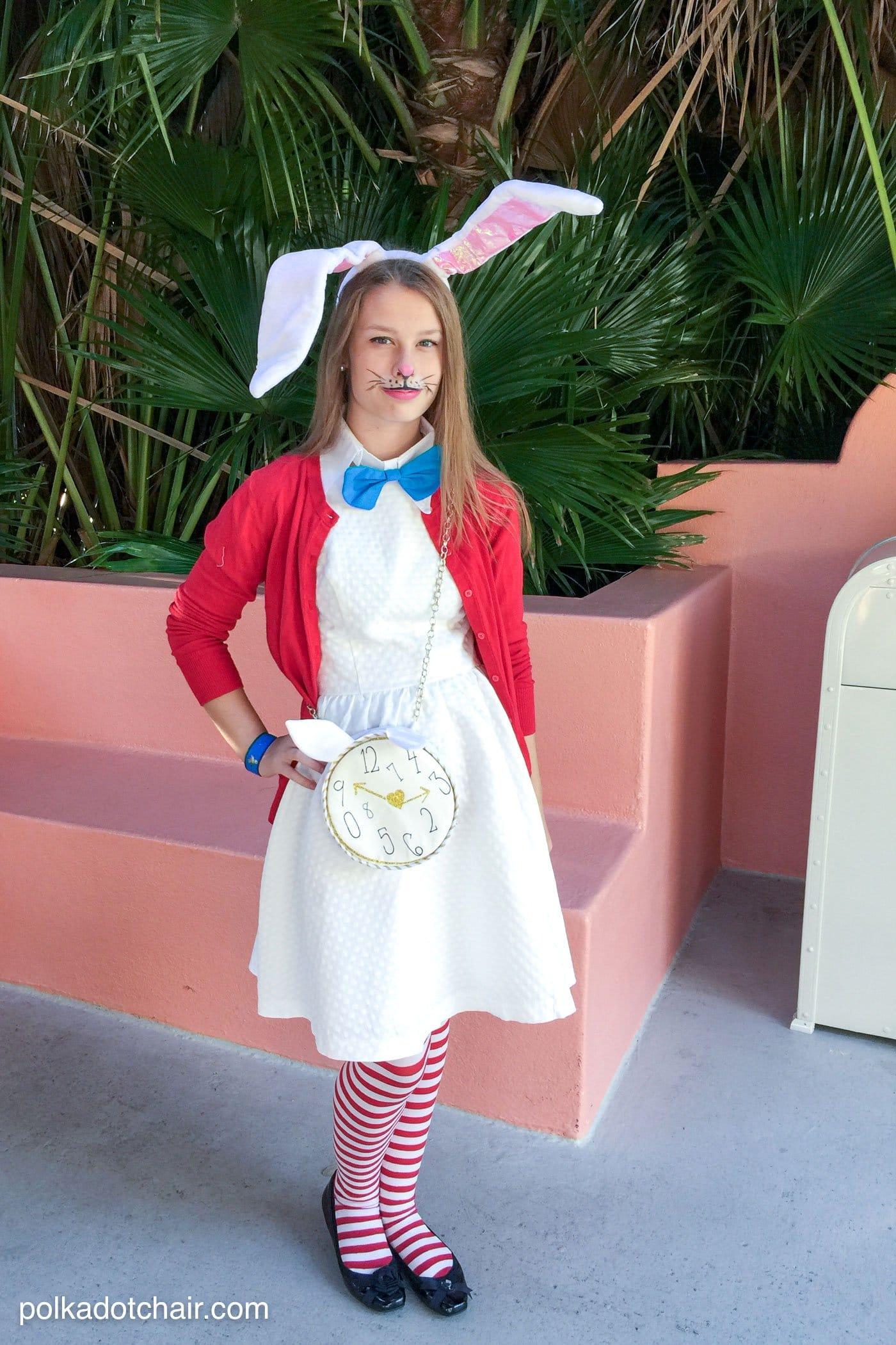 Alice In Wonderland Bunny Costume Ideas
