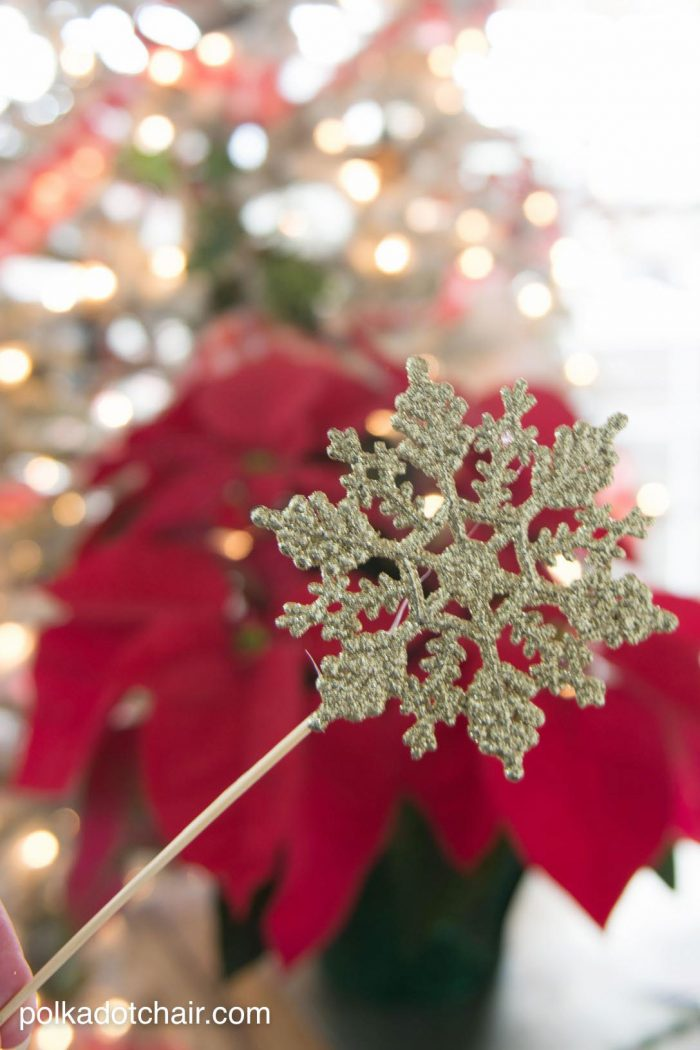 Christmas Ornaments For Photos