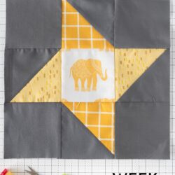 Friendship star quilt block on white cutting mat