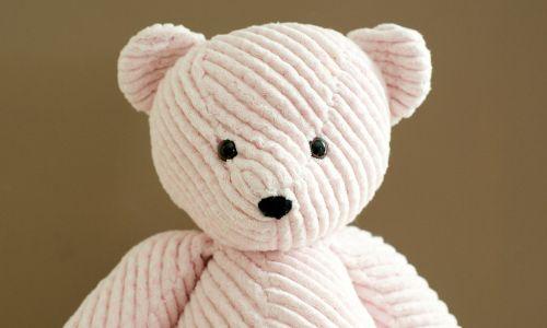 pink chenille teddy bear