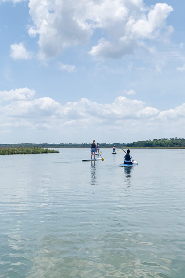 4 people on paddleboards in water
