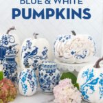 a collection of blue and white pumpkins on a white counter top with flowers